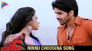 Bejawada - Bejawada Songs - Ninnu Choosina Song - Naga Chaitanya & Amala Paul
