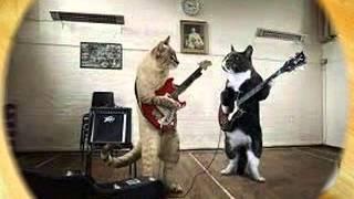 download lagu Malu Sama Kucing Romaria Dj Dugem 2015 gratis