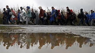 Croatia opens border with Serbia migrants flood across the frontier