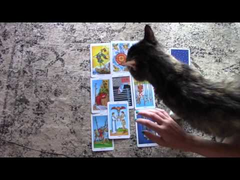 Aries 2016 May Love Reading With a Second General Reading