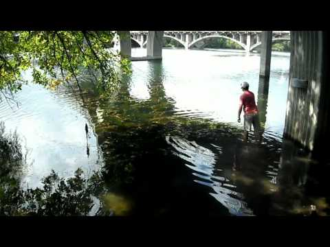 Austin Bass Fishing At Lady Bird Lake | Fishing Lake Austin | The Lunker