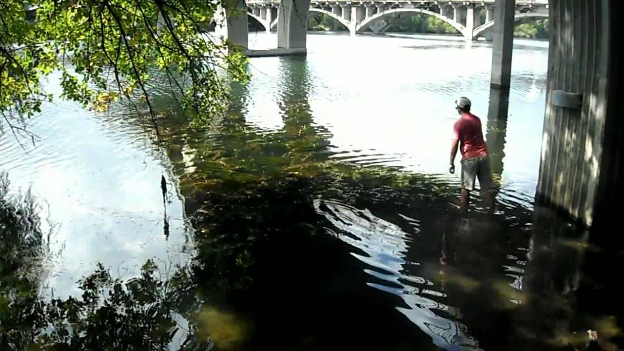 Austin bass fishing at lady bird lake fishing lake for Fishing spots in austin