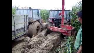 Zetor 7745 I Zetor 7245 Siliranje stuck in mud 2014