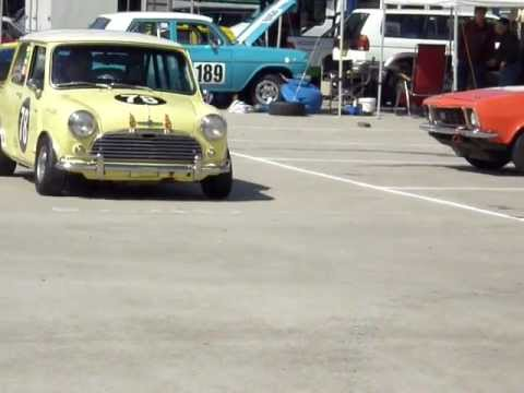 COOPER S AUSSIE MINI MUSCLE Chris Collett