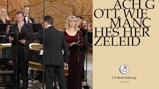J.S. Bach - Cantata BWV 58 Ach Gott, wie manches Herzeleid | Chorale (J. S. Bach Foundation)