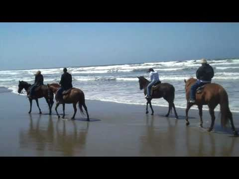 Horseback Riding  California Central Coast