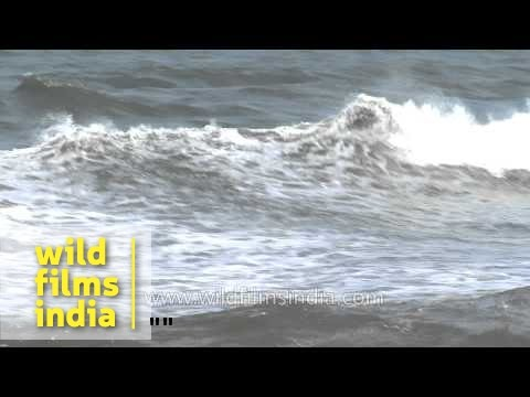 Arabian Sea in Quilon, Kerala