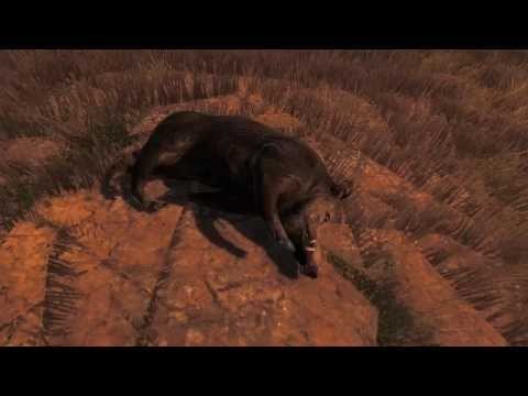 Jagen auf Schwein Mit Freunden ( Bilder mit Musik)
