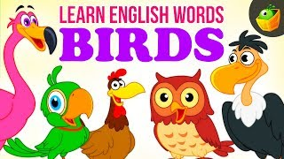 Birds - Pre School - Learn English Words (Spelling) Video For Kids and Toddlers