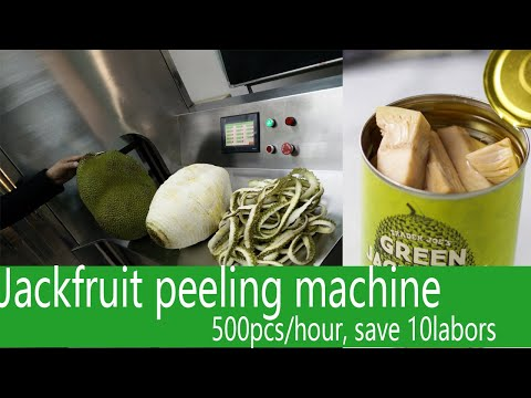 jackfruit peeling machine