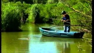 Top Pesca - Spinning al Black Bass e al Luccio