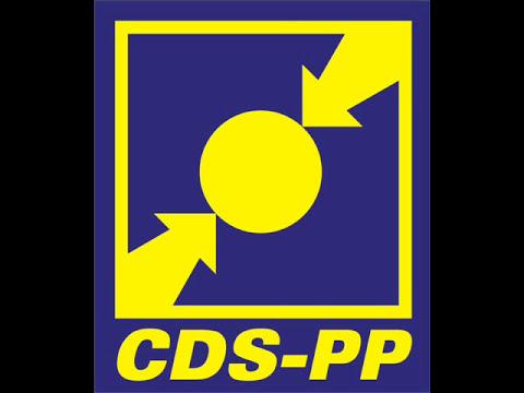 Hino CDS-PP