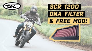 New DNA Filter for Scrambler 1200 - A Free Mod - & How to 'Auto-Adjust'