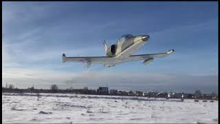 L-39 Albatros extremely low pass