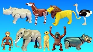 Playmobil Safari Wild Animals Buiding Toy Sets Collection For Kids