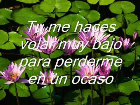 Amor amor amor annette moreno for Annette moreno y jardin