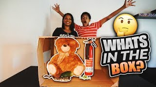 THE SNAKE BIT ME!!! Whats in the box challenge with CRAZY MOM!!!