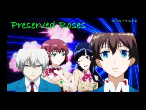 Valvrave The Liberator OP/Opening FULL - Preserved Roses