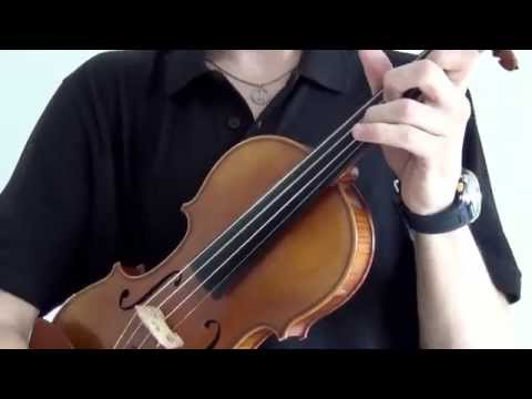 [HD] Violin Electronic Music