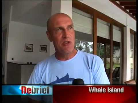 Sri Lanka Whale Movie video