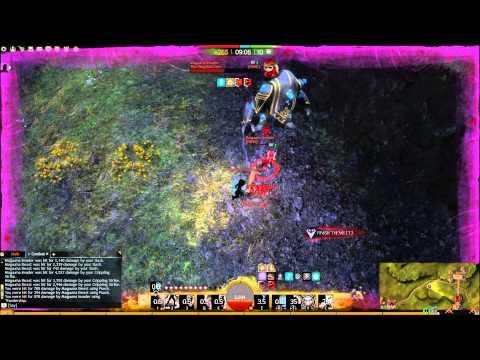 GW2 Thief Sword/Dagger + SB WvW Solo