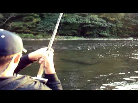 Salmon Fishing September 2012, Pulaski NY