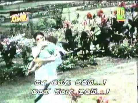 'chanda Hai Tu Mera Suraj Hai Tu' (movie: Aradhana-1969) With Sinhala Subtitle video