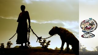 The Mysterious Nigerian Men Who Tame Wild Beasts