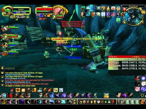World of Warcraft 3.3.5 Survival Hunter PVE DPS