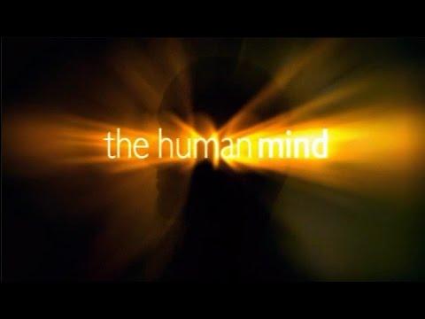Разум человека - часть 3. Заводим друзей