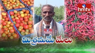 Mixed Crops Farming Advantages By Farmer JaggaReddy  | Nela Thalli | hmtv