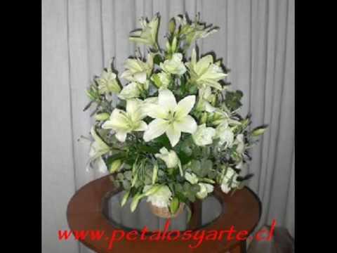 Preciosos (Arreglos Florales) en (Petalos y Arte)