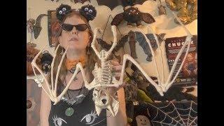 Online Halloween haul, black cat dress + hairband and jewelry