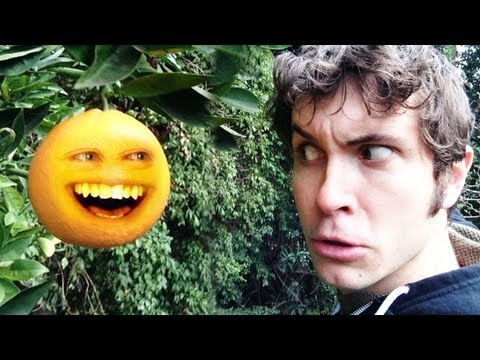 ANNOYING ORANGE IN REAL LIFE