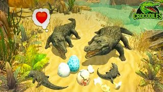 Crocodile Family Sim Online - Android/iOS Gameplay ᴴᴰ