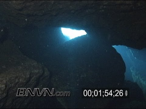 7/29/2005 Crystal River Florida, King Spring Cave Diving Video