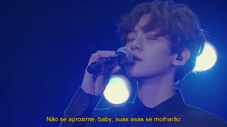 EXO - Moonlight Legendado PT/BR (LIVE)