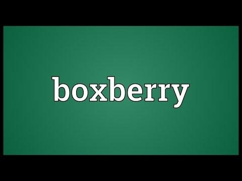Header of boxberry