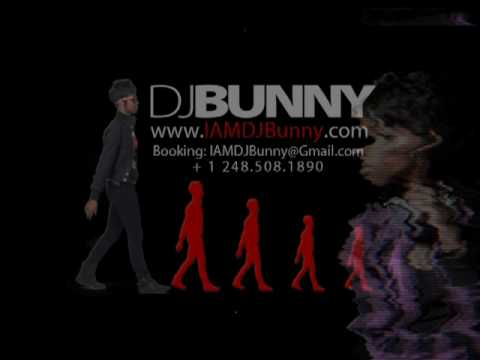 The Best 2010 House Mix - DJ Bunny