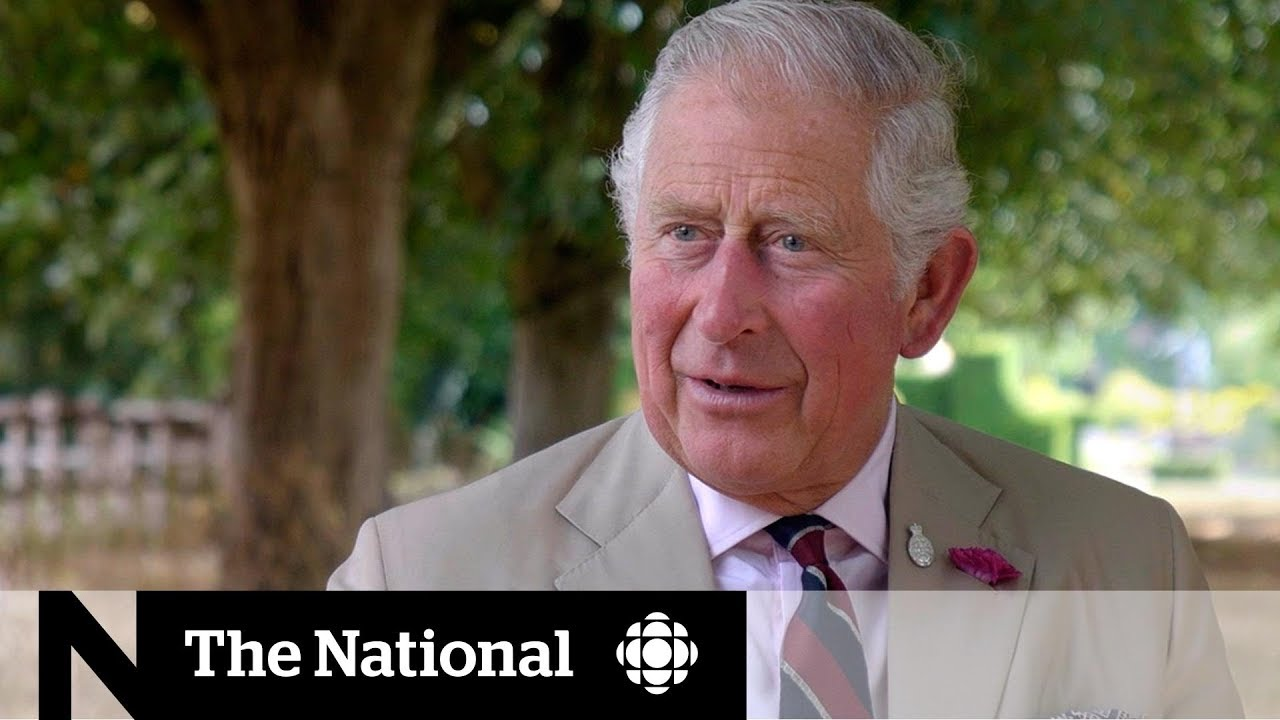 Prince Charles at 70: what kind of King could the Prince of Wales be? | Dispatch