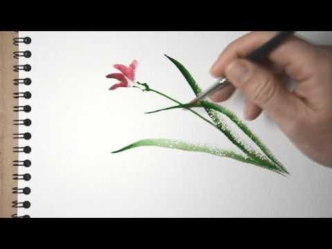 aquarelle peindre une orchid e sauvage sumi e watercolor tutorial youtube. Black Bedroom Furniture Sets. Home Design Ideas