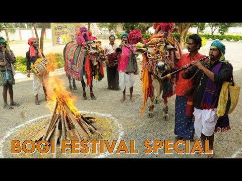 BOGI FESTIVAL SPECIAL | LADDO'S SPECIAL