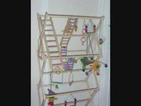 Make A Parrot Playgym Youtube