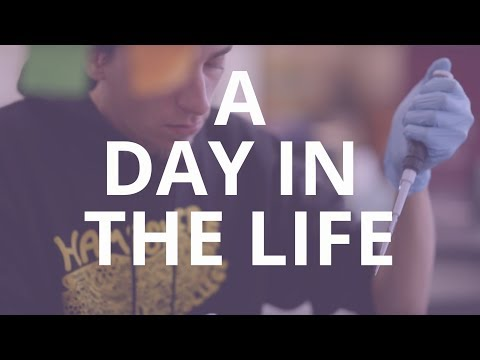 Hampshire College • A Day In The Life