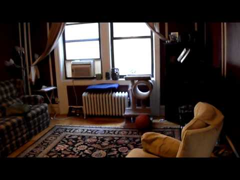 Huge prewar 5 room with elevator, laundry, dog friendly, ready to move in Aug 1