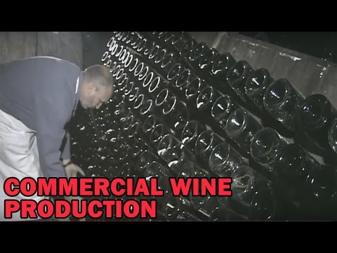 Commercial Wine Production