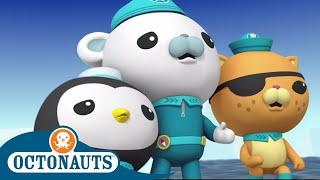 Octonauts - Surprise Adventures   Cartoons for Kids   Underwater Sea Education