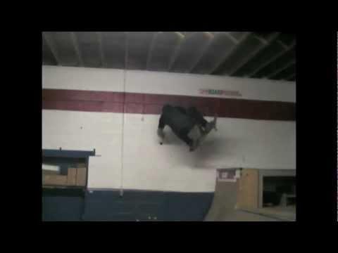 Cameron Skating the BoardPusher Warehouse.