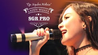 download lagu Ojo Nguber Welase - Laddy Wijaya Sgr Pro gratis