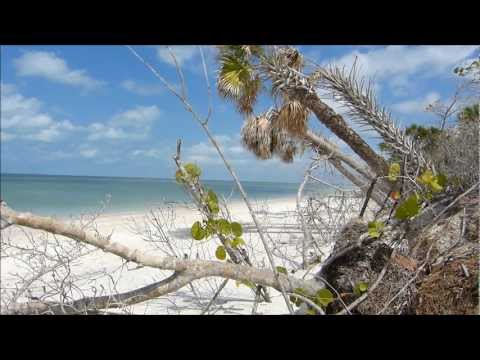 Barefoot Beach Bonita Springs, Florida - Island Lime Videos
